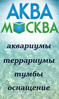 реклама на форуме аквариумистов