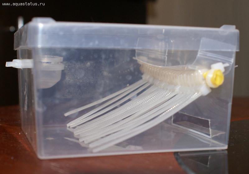 Ловушка для улиток в аквариуме своими руками видео