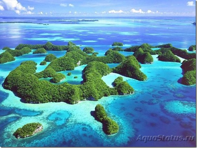 1019491Travel_PicturePalau_3.jpg