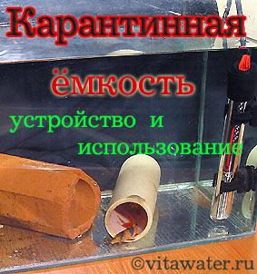 Меченосцы заболели - img01.jpg