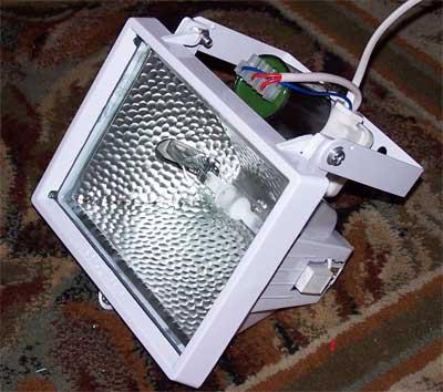 лампой для аквариума