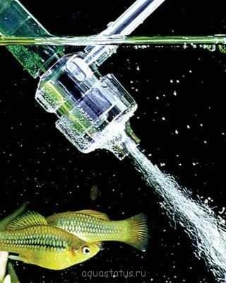 Выбор внешнего фильтра для аквариума. Какой выбрать внешний фильтр? - eheiem-dyfuzor-na-waz-sr_3009.jpg