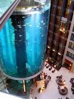 Интересные аквариумы со всего мира - aqua_dom_0.jpg