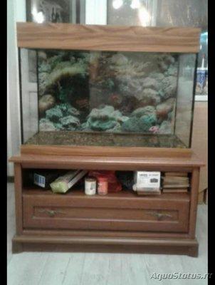 Неровно стоит аквариум - IMG_20181126_191045.jpg
