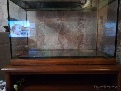 Неровно стоит аквариум - IMG_20181214_195612.jpg