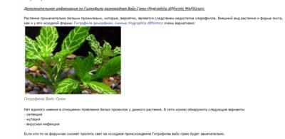 Аквариумные растения - опознание растений. - 2018-12-25_12-51-00.png