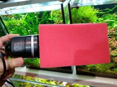 Обростают стенки аквариума - IMG_20181230_104908_HDR.jpg