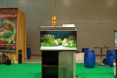 Мой аквариум на конкурсе аквадизайна Зоосфера 150 литров cdda  - DSC_2589.jpg