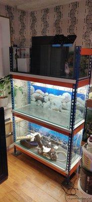 Стойка стеллаж для аквариумов - IMG_20190817_200116.jpg
