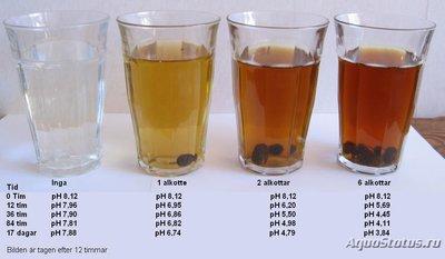 Как понизить ph кислотность воды в аквариуме? - aldercones.jpg