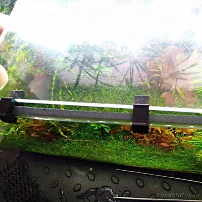 Покровное стекло на аквариум - IMG_20200508_114739.jpg
