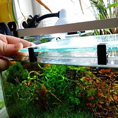 Покровное стекло на аквариум - IMG_20200508_121847.jpg