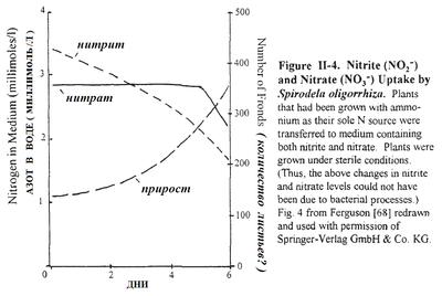 Запуск аквариума - потребление нитрита.PNG