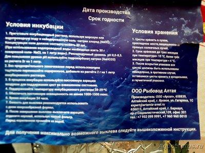 Артемия корм для аквариумных рыб - 20210131_115711ь.jpg