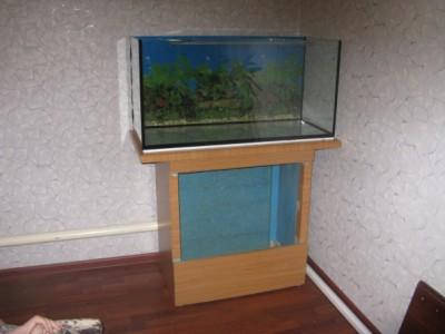 Запускаю аквариум на 200 литров - IMG_1050.jpg