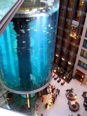 Интересные аквариумы со всего мира - big-001.jpg