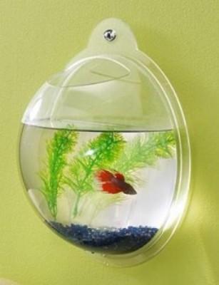 Интересные аквариумы со всего мира - wall-fish7.jpg
