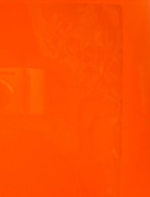 Наклеивание пленки на стекло аквариума - S8301853.JPG