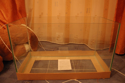 17.12.2008 Получен новый аквариум, специально для конкурса, спасибо Роме из аквастатуса. Все сделали быстро и качественно, аквариум 600х300х360 - 01.jpg