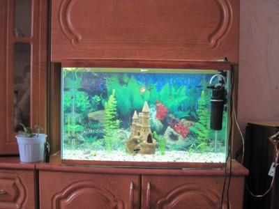 Светодиодное освещение аквариума - IMG_4913.JPG