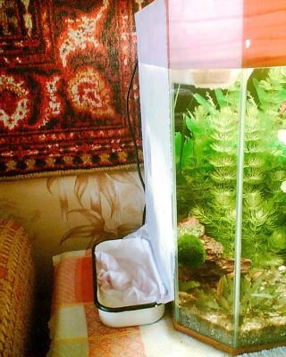 Бюджетное охлаждение аквариума - 001.jpg