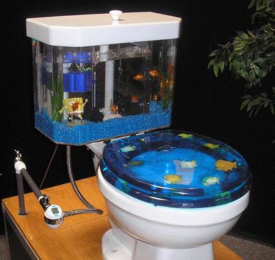 Интересные аквариумы со всего мира - fishtoilet_1.jpg