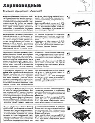 Помогите опознать рыбку опознание рыб  - Безымянный_1.jpg