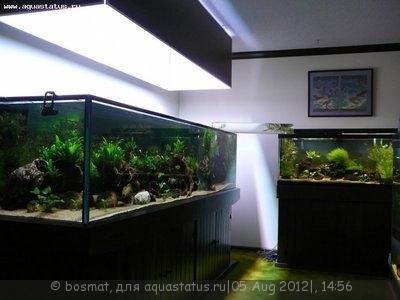 Выбор внешнего фильтра для аквариума. Какой выбрать внешний фильтр? - TankRoom4.jpg