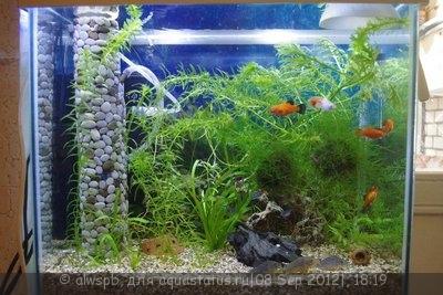 Светодиодное освещение аквариума - 04.jpg
