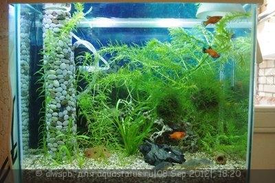 Светодиодное освещение аквариума - 07.jpg