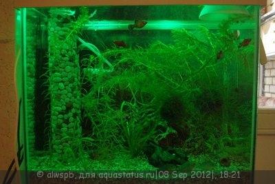 Светодиодное освещение аквариума - 10.jpg