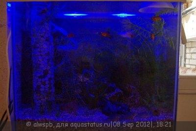 Светодиодное освещение аквариума - 11.jpg