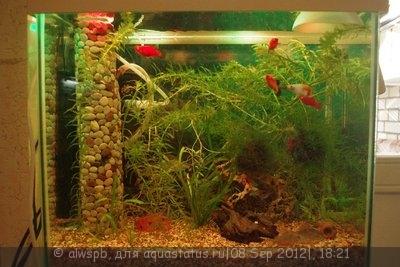 Светодиодное освещение аквариума - 12.jpg