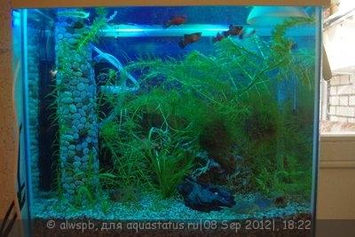 Светодиодное освещение аквариума - 14.jpg