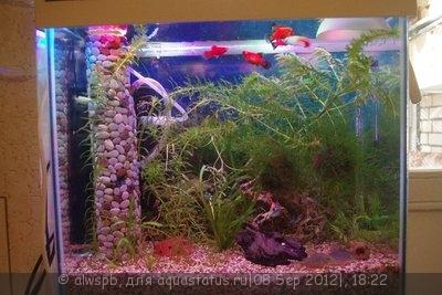 Светодиодное освещение аквариума - 15.jpg