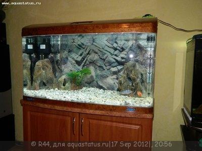 Мой новый аквариум Jebo 250 литров R44  - Изображение 011.jpg