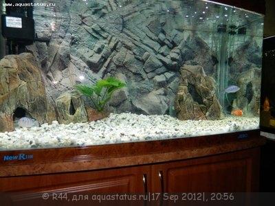 Мой новый аквариум Jebo 250 литров R44  - Изображение 013.jpg