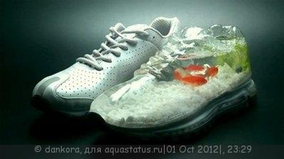Интересные аквариумы со всего мира - 1277363187_nike_air_abuku-01-508x284.jpg