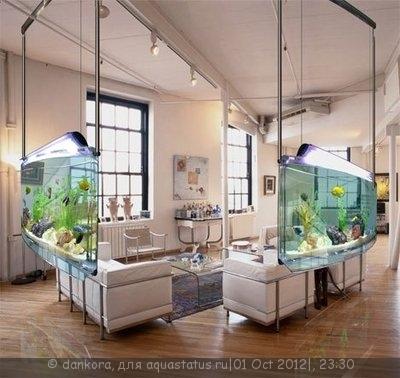 Интересные аквариумы со всего мира - 1295811862_aquaceiling52.jpg