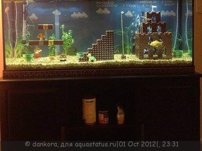 Интересные аквариумы со всего мира - 1341671155_akvarium7.jpg