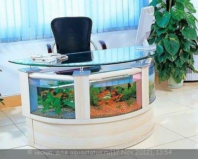 Интересные аквариумы со всего мира - mVe9g5x6GGk.jpg