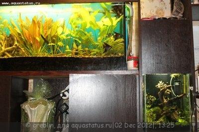 Светодиодное освещение аквариума - IMG_3808[1].jpg