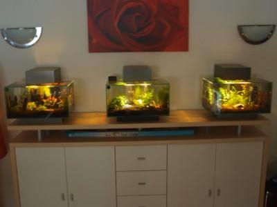 один из поклоников обзавёлся сразу 3 такими аквариумами - Fluval 2[1].jpg