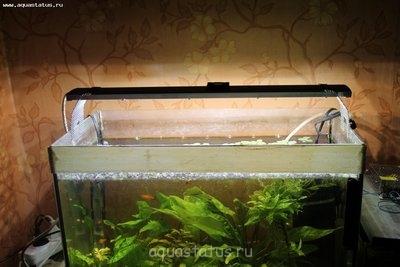 Светодиодное освещение аквариума - IMG_5248[1].jpg