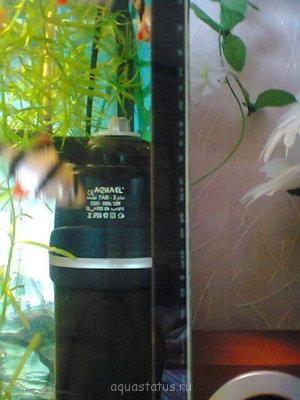 опасны ли эти пузырьки? - Фото0008.jpg