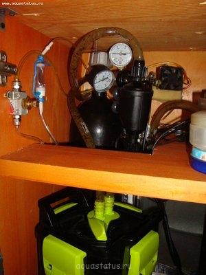 Аквариум - площадка для экспериментов 120 литров Roywalk  - DSC05315.JPG
