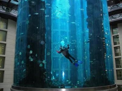 Интересные аквариумы со всего мира - aqua_dom_6.jpg