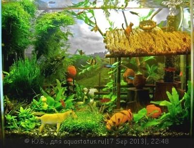 Фото аквариумов объемом от 31 до 100 литров - вариант4ЮП1.jpg