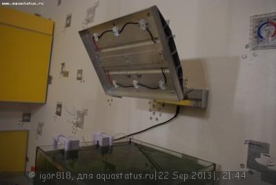 Светодиодное освещение аквариума - IMGP4606.JPG