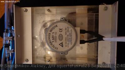 Аквариум 200 литров Sapozhnikov-Aleksey  - DSC00817.JPG